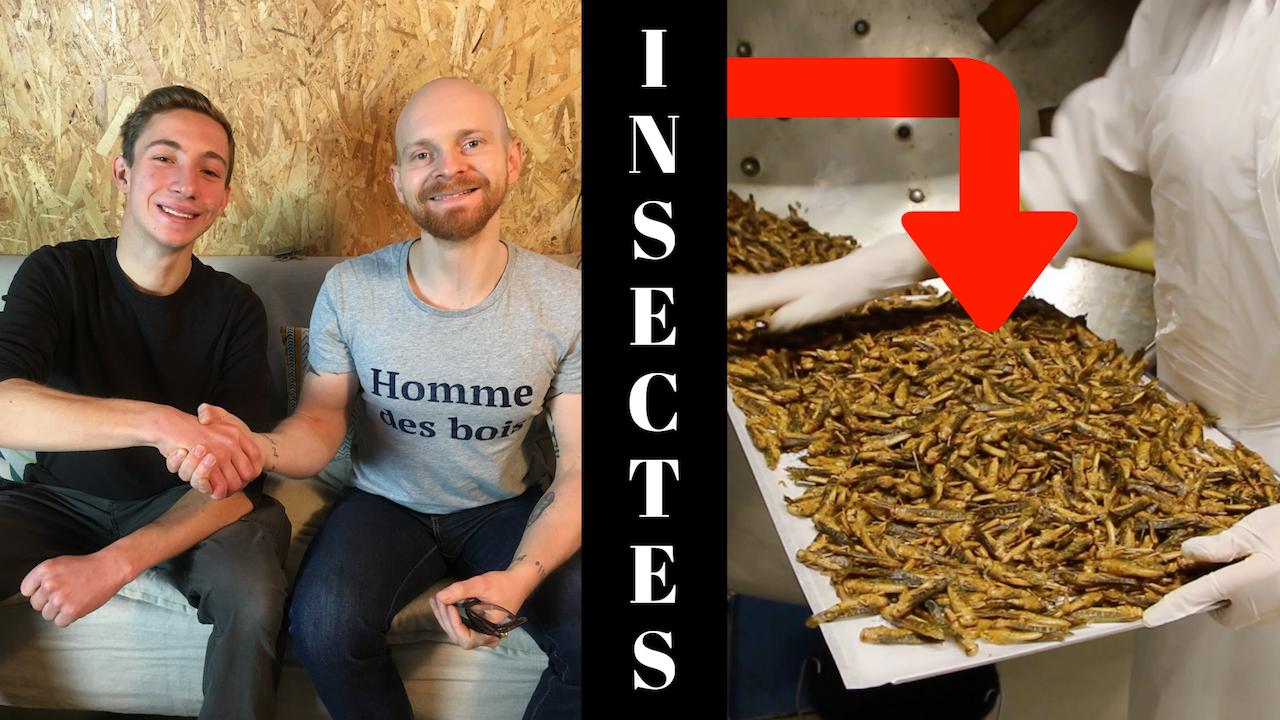 INTERVIEW FLORIAN NOCK: un spécialiste de l'entomophagie (consommation d'insectes)